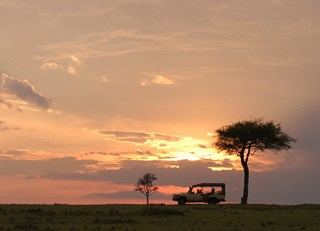 10 Reasons to Plan a Safari Trip to Kenya's Fairmont Mara Safari Club