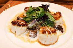 Nantucket Scallops