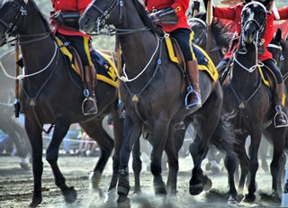 The RCMP Musical Ride....what a treat