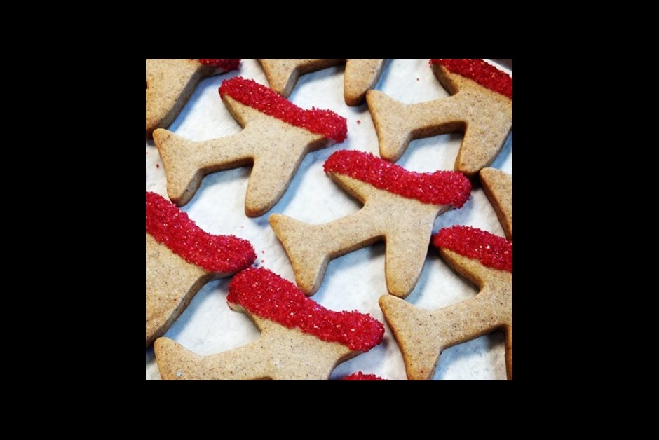 Gingerbread Airplane Cookies