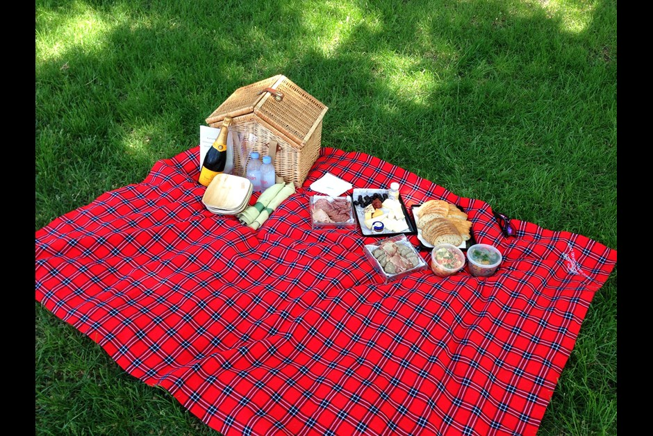 THE SPECIAL PICNIC PREPARED BY FAIRMONT STAFF!!