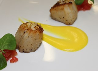 Seared Scallops Navel Orange Purée