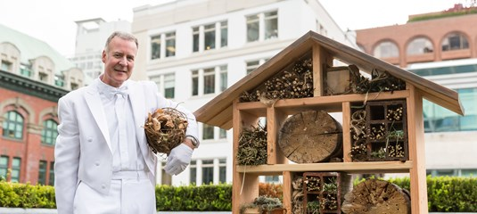 Bees Gone Wild ~ The Buzz on Bees with Bee Butler Michael King (June 2015)