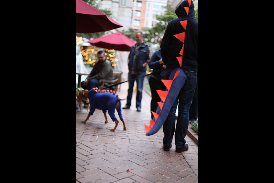 The Fourth Annual Howl-O-Ween Trick or Treating for Dogs at Fairmont 13