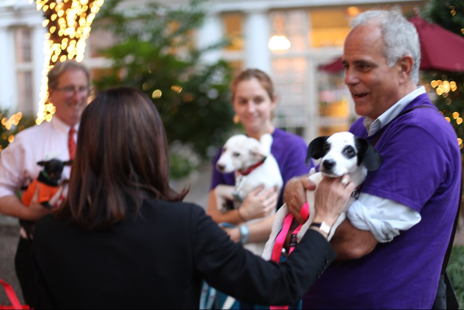 The Fourth Annual Howl-O-Ween Trick or Treating for Dogs at Fairmont 5