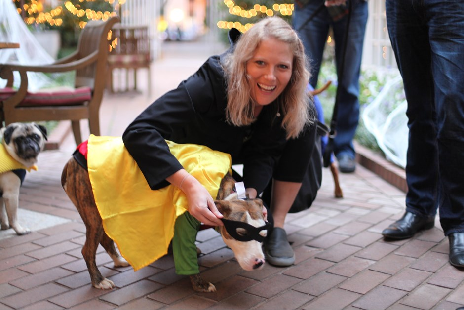 The Fourth Annual Howl-O-Ween Trick or Treating for Dogs at Fairmont 14