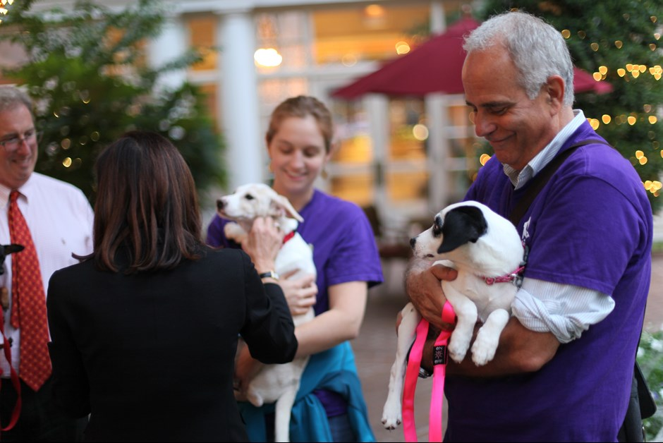 The Fourth Annual Howl-O-Ween Trick or Treating for Dogs at Fairmont 6