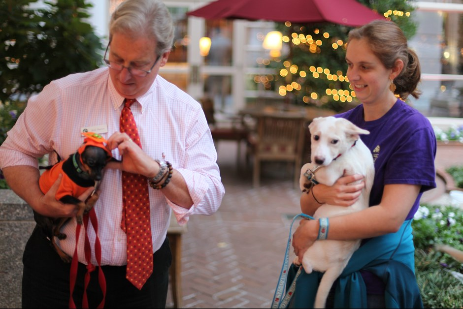 The Fourth Annual Howl-O-Ween Trick or Treating for Dogs at Fairmont 7