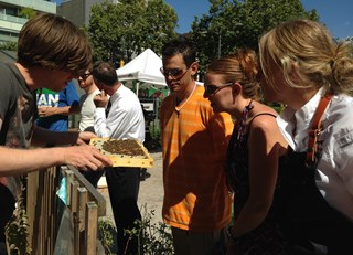 Hives for Humanity Workshop Series at Hastings Urban Farm (#FairmontBuzz)