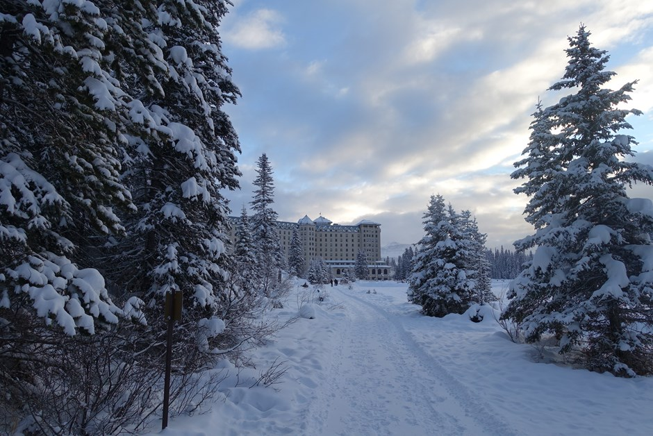 The Chateau through the snow topped trees